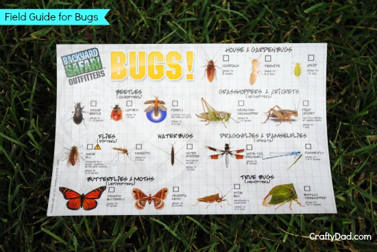 Field Guide for Bugs