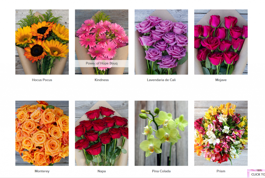 Sample Bouqs Flowers