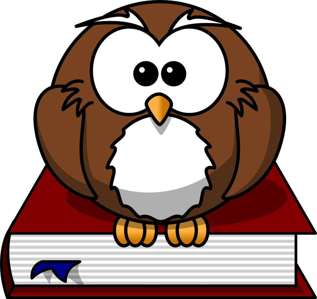 Owl sitting on a book